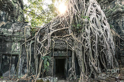 Tree Roots Photograph - Famous Old Temple Ruin With Giant Tree Roots - Angkor Wat - Cambodia by Matteo Colombo