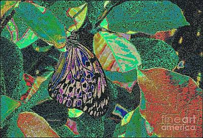 Art Print featuring the photograph Fanciful by Kathie Chicoine