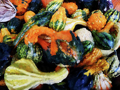 Zucchinis Photograph - Fancy Gourds by Susan Savad