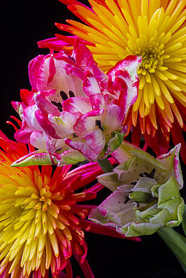 Fancy Tulips And Spider Mums Art Print by Garry Gay