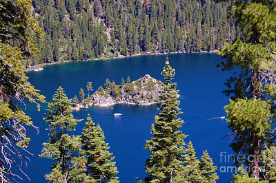 Photograph - Fannette Island Between Trees by Debra Thompson