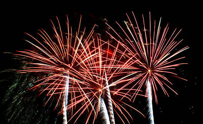 Fireworks Photograph - Fans by Lester Phipps
