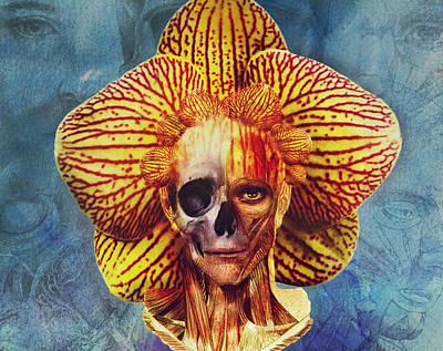 Fantasy Digital Art - Fantastical Anatomy2 by Michael Volpicelli