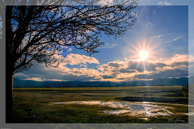 Pacific Northwest Photograph - Fantasy Afternoon by Mick Anderson