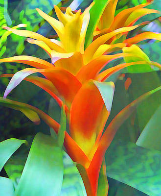 Photograph - Fantasy Bromeliad Abstract 2 by Margaret Saheed