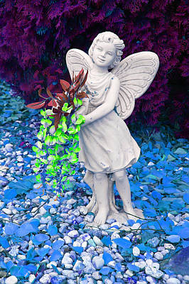 Photograph - Fantasy Fairy by Aimee L Maher ALM GALLERY