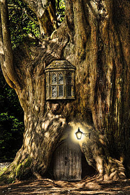 Miniature Effect Photograph - Fantasy Fairytale Miniature House In Tree In Forest by Matthew Gibson