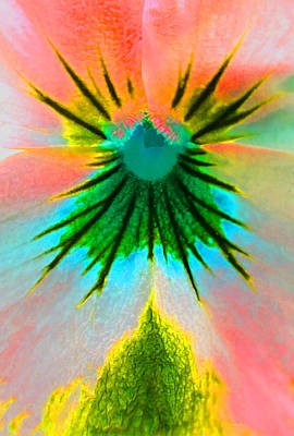 Photograph - Fantasy Flower 3 by Duane McCullough