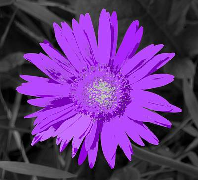 Digital Art - Fantasy Flower 5 by Ron Davidson