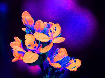Fantasy Flowers 13 Print by Margaret Saheed
