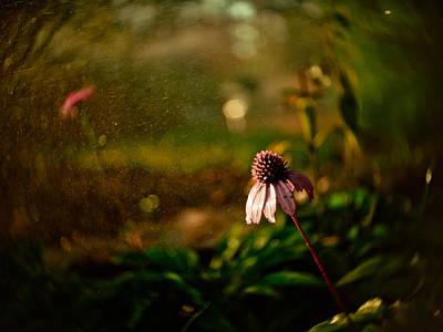 Pouring Digital Art - Fantasy Flowers by Linda Unger