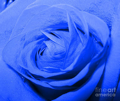 Photograph - Fantasy. Blue Rose. Abstract Art by Oksana Semenchenko