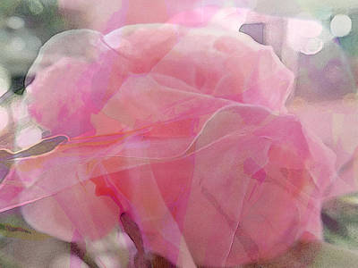 Photograph - Fantasy Roses by Judy Paleologos