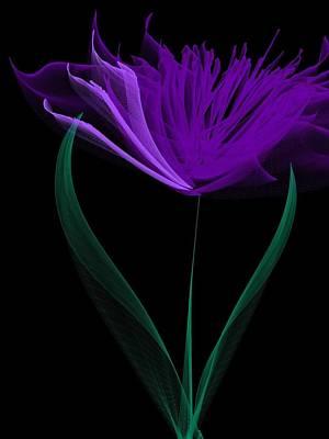 Purple Flowers Digital Art - Fantasy Tulip  by Heidi Smith