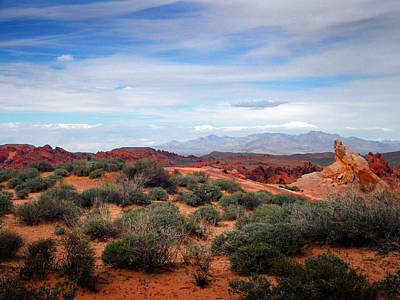 Photograph - Far Off Across The Desert by Frank Wilson