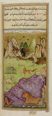 Farisa The Pious Jackal Art Print by British Library