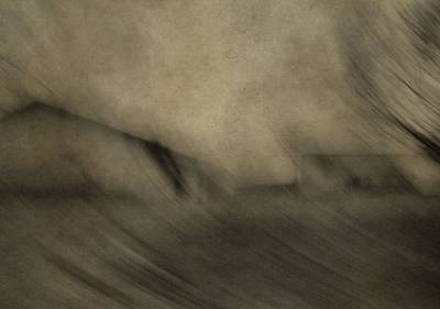 Hair Abstract Art Photograph - Farm Abstract by Dan Sproul