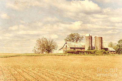Farm And Fields  Art Print by Olivier Le Queinec