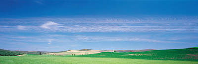 Cordoba Photograph - Farm Audausia Cordoba Vicinity Spain by Panoramic Images