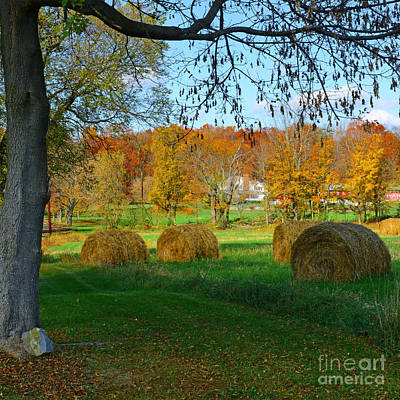 Country Scene Photograph - Farm - Autumn Harvest by Paul Ward