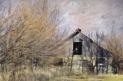 Photograph - Farm - Barn - Country Charm by Liane Wright