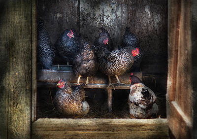 Farm - Chicken - The Hen House Art Print by Mike Savad