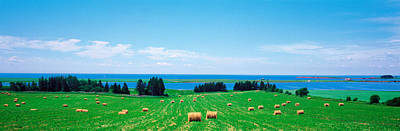 Bale Photograph - Farm Field Prince Isl Canada by Panoramic Images