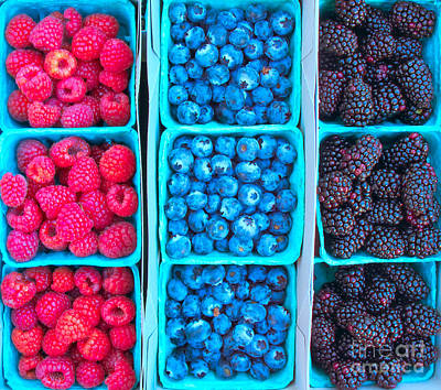 Photograph - Farm Fresh Berries - Raspberries Blueberries Blackberies by Ram Vasudev