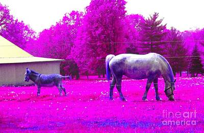 Art Print featuring the photograph Farm Friends - Animals by Susan Carella