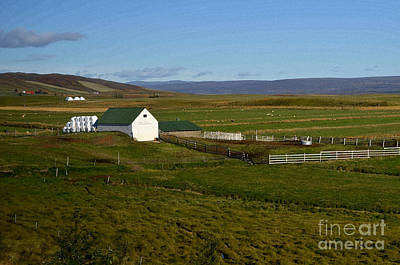 Digital Art - Farm House In Iceland by Eva Kaufman
