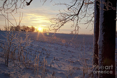 Photograph - Farm In Winter by Jim West
