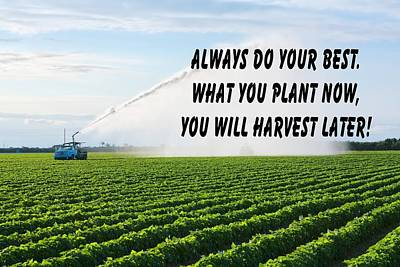 Photograph - Farm Land Quote by Rudy Umans