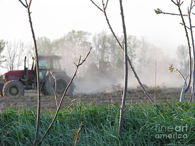 Art Print featuring the photograph Farm Life  by Michael Krek