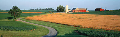Cornfield Photograph - Farm Nr Mountville Lancaster Co Pa Usa by Panoramic Images