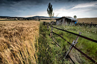 Photograph - Farm by Okan YILMAZ