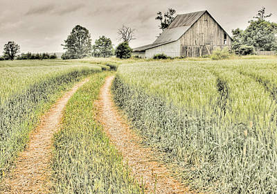 Photograph - Farm On Diamondview Road by Rob Huntley
