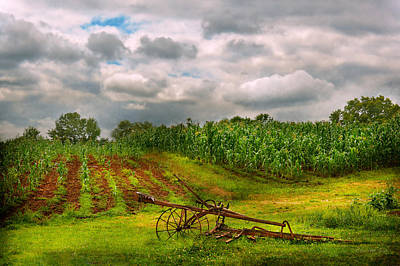 Photograph - Farm - Organic Farming by Mike Savad