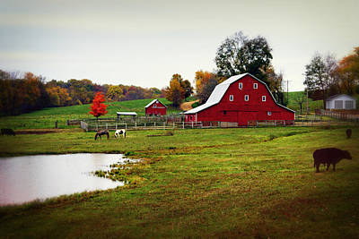 Farm Perfect Art Print by Marty Koch