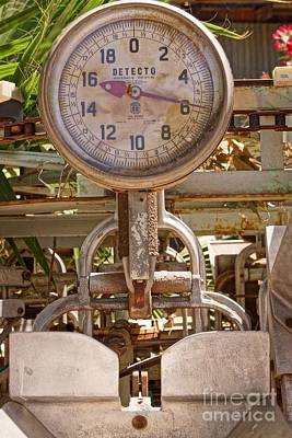 Photograph - Farm Scale by Kerri Mortenson