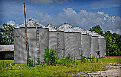 Photograph - Farm Sentinels by Linda Brown