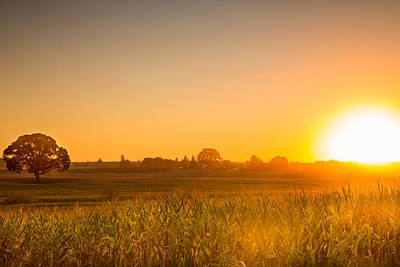 Photograph - Farm Sunset by Kunal Mehra