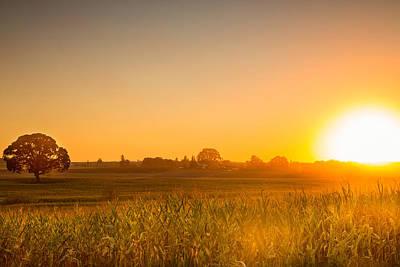 Photograph - Farm Sunset by Kunal Mehra