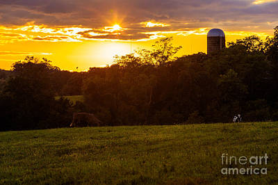 Photograph - Farm Sunset by Mark East