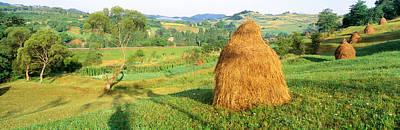 Romania Photograph - Farm, Transylvania, Romania by Panoramic Images
