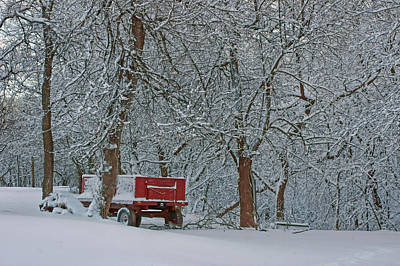 Photograph - Farm Wagon In Winter by Nikolyn McDonald