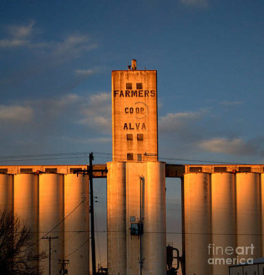 Photograph - Farmer's Co-op Alva by Anjanette Douglas