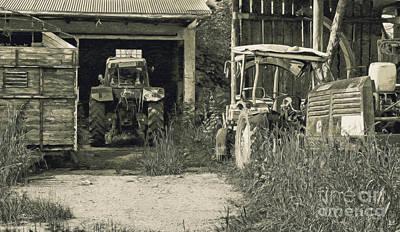 Photograph - Farmer's Delight by Jutta Maria Pusl
