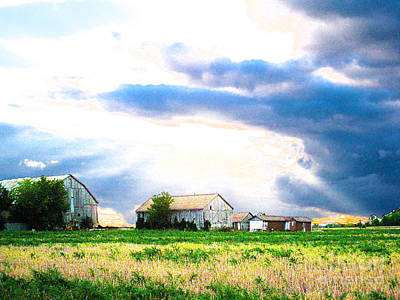 Photograph - Farmer's Field At Sundown by Nina Silver