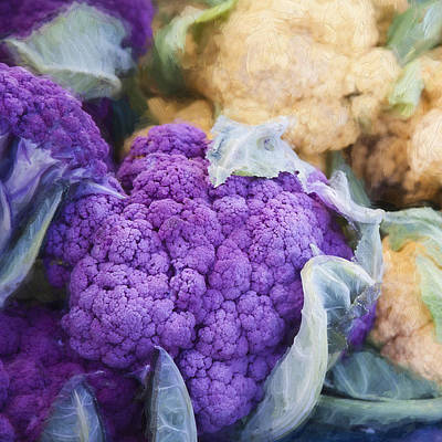 Cauliflower Digital Art - Farmers Market Purple Cauliflower Square by Carol Leigh