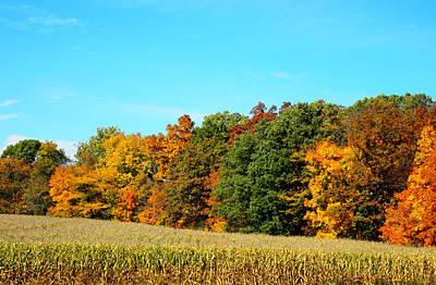 Farmfield Fall Print by Dan Sproul